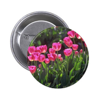 Carefree And Caring Pink Pinback Button