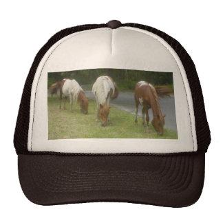 Carefree Ponies Hat