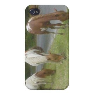 Carefree Ponies iPhone 4/4S Cases