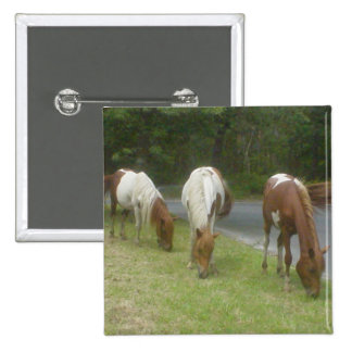 Carefree Ponies Pinback Buttons