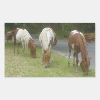 Carefree Ponies Rectangular Sticker
