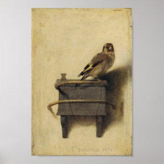 Carel Fabritius el Goldfinch Póster