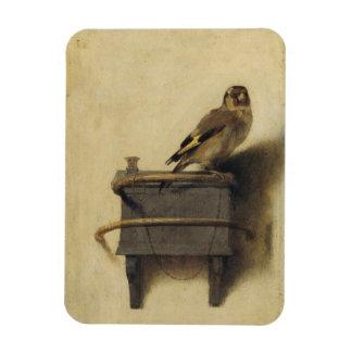 Carel Fabritius The Goldfinch Rectangular Photo Magnet