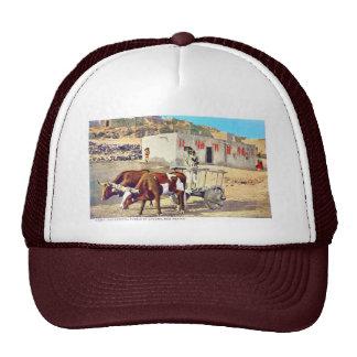 Caretta viejo, pueblo de Laguna, New México Gorro De Camionero