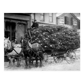Carga de Navidad Trees, 1910 Postal