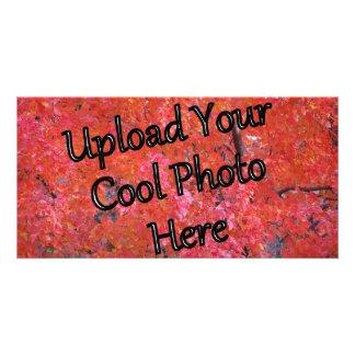 Carga por teletratamiento personalizada Pix de la Tarjetas Fotográficas