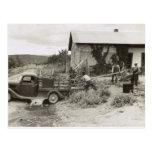 Cargando un cortacéspedes - 1940. postal
