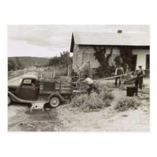 Cargando un cortacéspedes - 1940. tarjeta postal