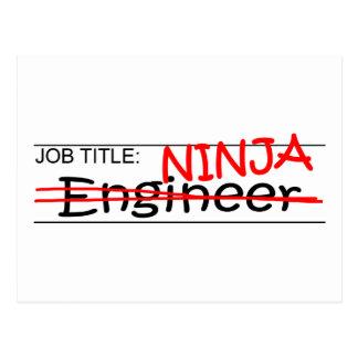 Cargo Ninja - ingeniero Postal