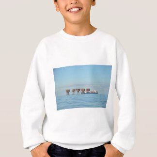 Cargo Ship And Forts Sweatshirt