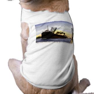 Carguero vacío que pasa el puente de báscula cerr camisa de perrito