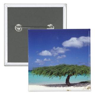 Caribbean, Aruba. Eagle Beach 2 Inch Square Button