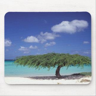 Caribbean, Aruba. Eagle Beach Mouse Pad