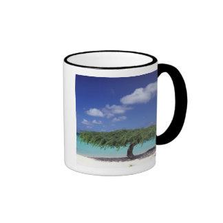 Caribbean Aruba Eagle Beach Mugs