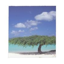 Caribbean, Aruba. Eagle Beach Notepad