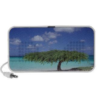 Caribbean Aruba Eagle Beach Mini Speakers