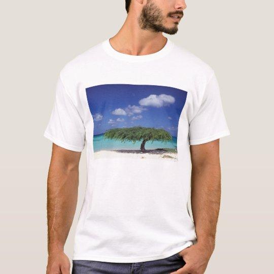 Caribbean, Aruba. Eagle Beach T-Shirt