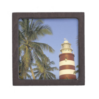 Caribbean, Bahamas, Abaco, Elbow Cay. Hopetown Jewelry Box