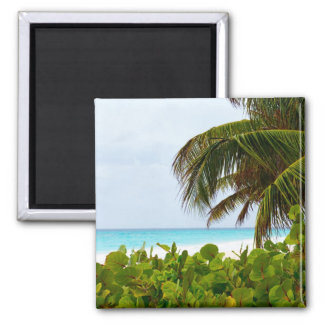 CARIBBEAN BEACH - BARBADOS 2 INCH SQUARE MAGNET
