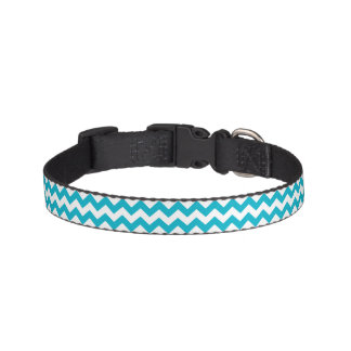 Caribbean Blue Chevron Pet Collar