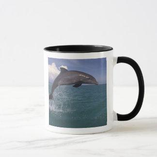 Caribbean, Bottlenose dolphin Tursiops 3 Mug