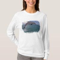 Caribbean, Bottlenose dolphin Tursiops 3 T-Shirt