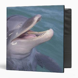 Caribbean, Bottlenose dolphin Tursiops 4 3 Ring Binder
