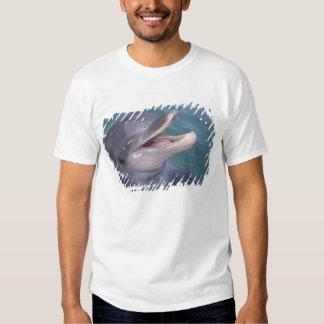 Caribbean, Bottlenose dolphin Tursiops 4 T-shirt