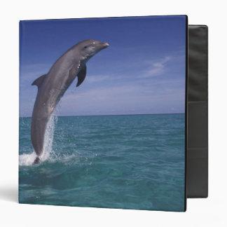 Caribbean, Bottlenose dolphin Tursiops Vinyl Binder