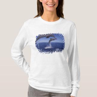 Caribbean, Bottlenose dolphins Tursiops 12 T-Shirt
