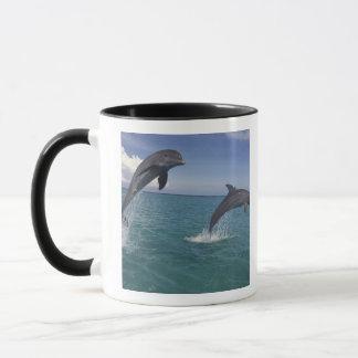 Caribbean, Bottlenose dolphins Tursiops 13 Mug