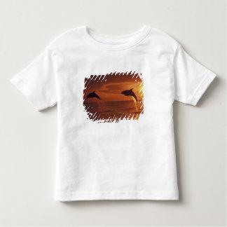 Caribbean, Bottlenose dolphins Tursiops 14 Toddler T-shirt