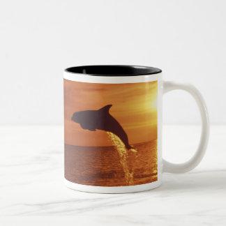 Caribbean, Bottlenose dolphins Tursiops 14 Two-Tone Coffee Mug