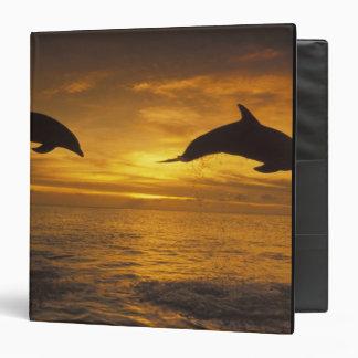 Caribbean, Bottlenose dolphins Tursiops 17 Vinyl Binder
