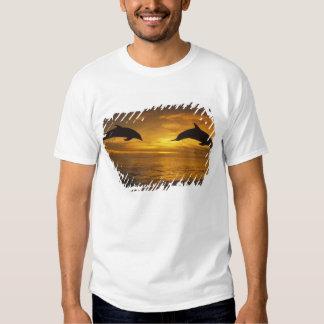 Caribbean, Bottlenose dolphins Tursiops 17 Tee Shirt