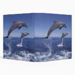 Caribbean, Bottlenose dolphins Tursiops 3 Vinyl Binder