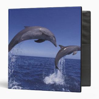 Caribbean, Bottlenose dolphins Tursiops 7 Vinyl Binders