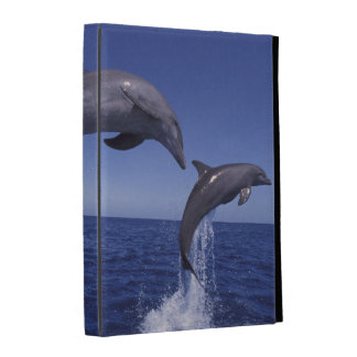 Caribbean, Bottlenose dolphins Tursiops 7 iPad Cases