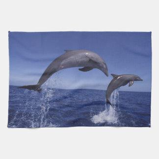 Caribbean, Bottlenose dolphins Tursiops 7 Hand Towel