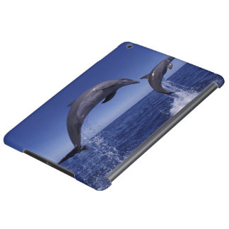 Caribbean, Bottlenose dolphins Tursiops 7 iPad Air Cover