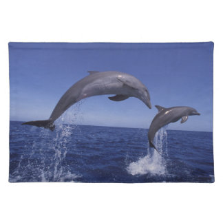 Caribbean, Bottlenose dolphins Tursiops 7 Placemats