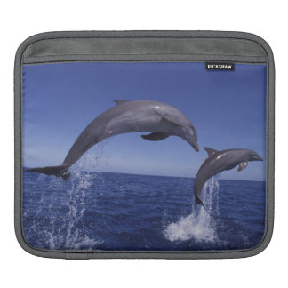 Caribbean, Bottlenose dolphins Tursiops 7 Sleeve For iPads