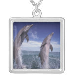 Caribbean, Bottlenose dolphins Tursiops Square Pendant Necklace