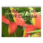 Caribbean Color...The Flowers Calender 2009 Calendar