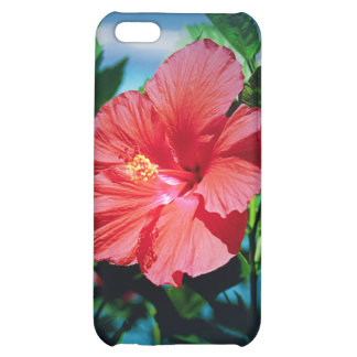 Caribbean flower cover for iPhone 5C