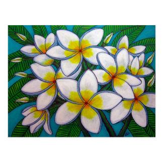 Caribbean Gems Post Card