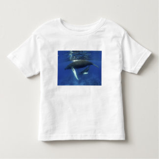 Caribbean, Greater Antilles archipelago, Toddler T-shirt