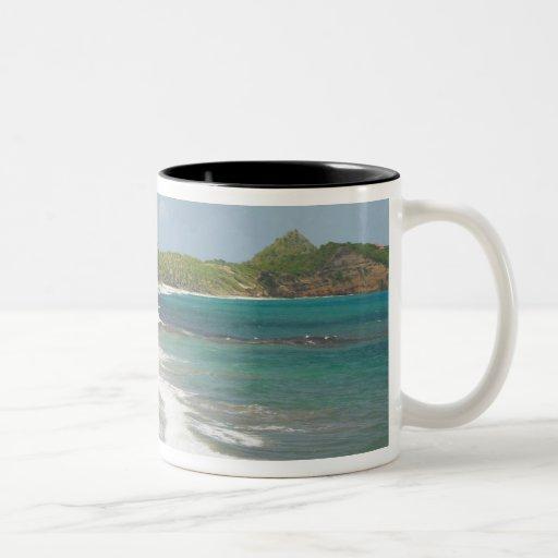 Caribbean, GRENADA, East Coast, Grenada Bay, Two-Tone Coffee Mug