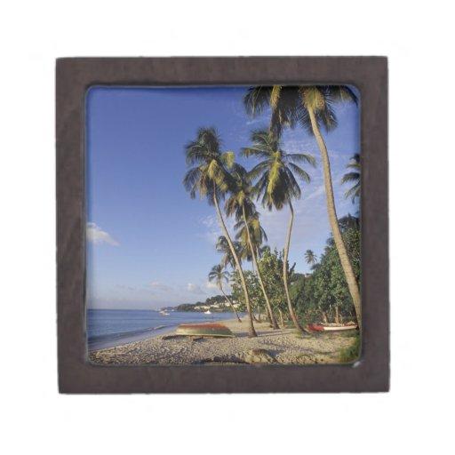 CARIBBEAN, Grenada, St. George, Boats on palm Keepsake Box