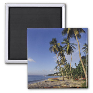 CARIBBEAN, Grenada, St. George, Boats on palm Magnet
